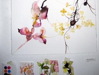 wallpaper fotografi
